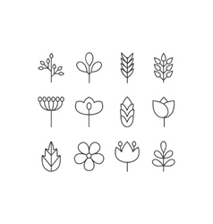 floral icons set vector image