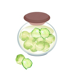A jar of delicious pickled brussels sprouts vector