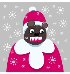 Aggressive bear clothed as in red coat and cap vector image