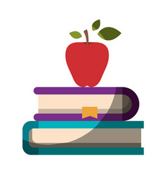 Realistic colorful shading image of pair of books vector