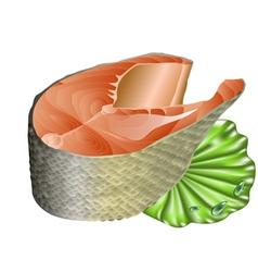salmon on lettuce leaf vector image vector image