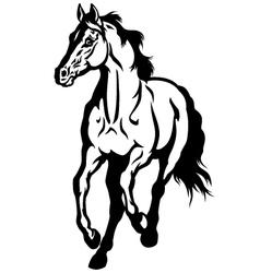 running horse black white vector image
