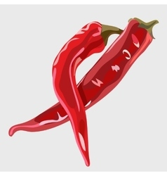 Two realistic red chile peppers food icon vector