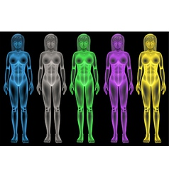 Female coloured bodies vector image vector image
