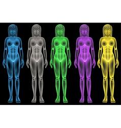 Female coloured bodies vector