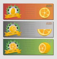 For ripe fruit yellow kumquat vector