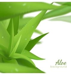 Green aloe vera realistic background vector