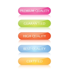 Quality Buttons vector image