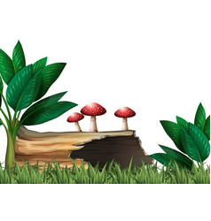 Garden scene with log and mushrooms vector