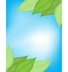 Green and blue nature card vector