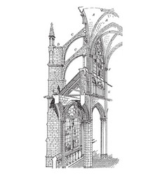 Amiens cathedral cross section of gothic vector
