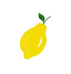 Summer lemon vector