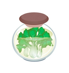 A jar of delicious pickled bok choy vector