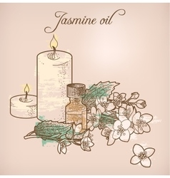 Jasmine essential oil and candles vector