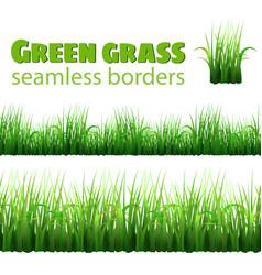 green grass seamless borders vector image