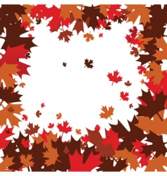 maple leafs vector image vector image