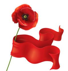 poppy and ribbon vector image