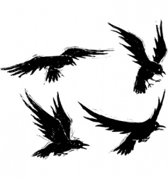 Grunge crows vector