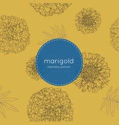 Orange marigolds hand draw sketch vector
