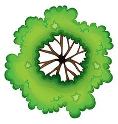 A birdeye view of a green plant vector