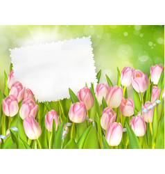 Bouquet of tulips EPS 10 vector image