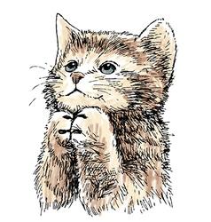 kitten 1 vector image vector image