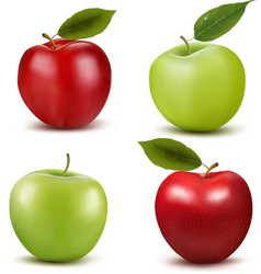 Set of red and green apple fruits with cut and vector image vector image