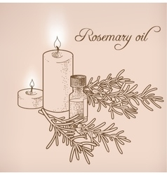 Rosemary essential oil and candles vector