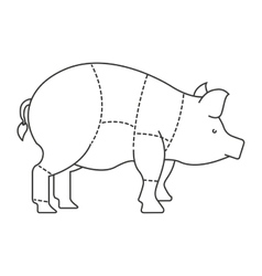 Pork meat isolated icon design vector