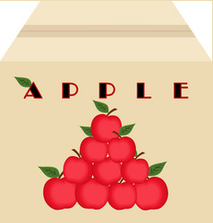 box of apples vector image vector image