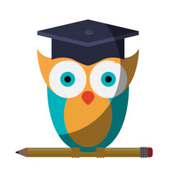 Realistic colorful shading image of owl knowledge vector