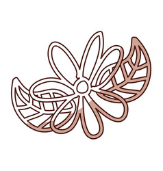 shadow flower cartoon vector image