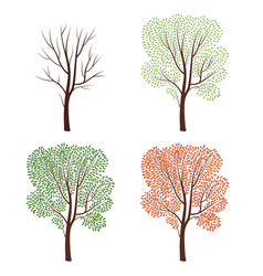 Four seasons naturedecor tree set plant seasonal vector