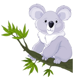 Koala on a tree vector