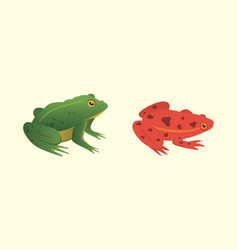 exotic amphibian set frogs in different styles vector image vector image