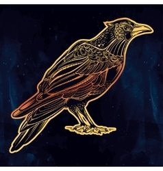 Detailed hand drawn raven bird vector