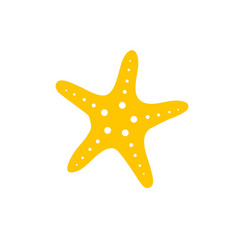 star fish vector image