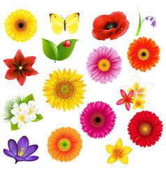 c lorful big flowers andleaf set with gradient vector image vector image