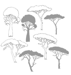 Savanna trees vector