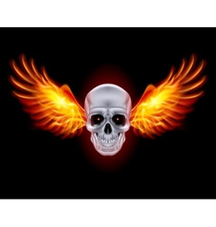 Mysterious dark chrome metal skull wings 01 vector
