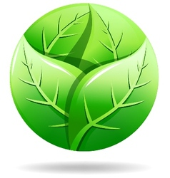 Green eco logo vector
