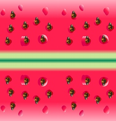 Watermelon portion vector