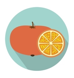 Colorful circular shape with tangerine fruit and vector