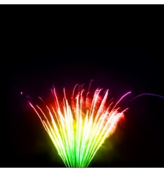 Colorful fireworks in the night sky vector image vector image