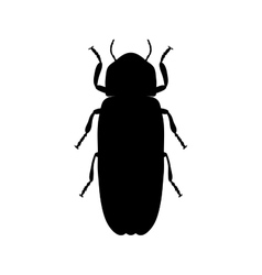 Firefly beetle lampyridae sketch of firefly vector