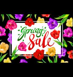spring sale banner colotful tulips flowers black vector image