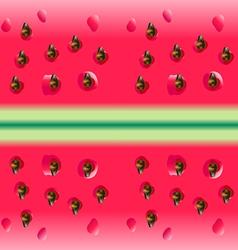 Watermelon portion vector