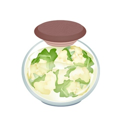 A jar of delicious pickled white cauliflower vector