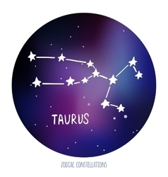 Taurus sign zodiacal constellation made of vector