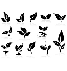 Plants icons set vector